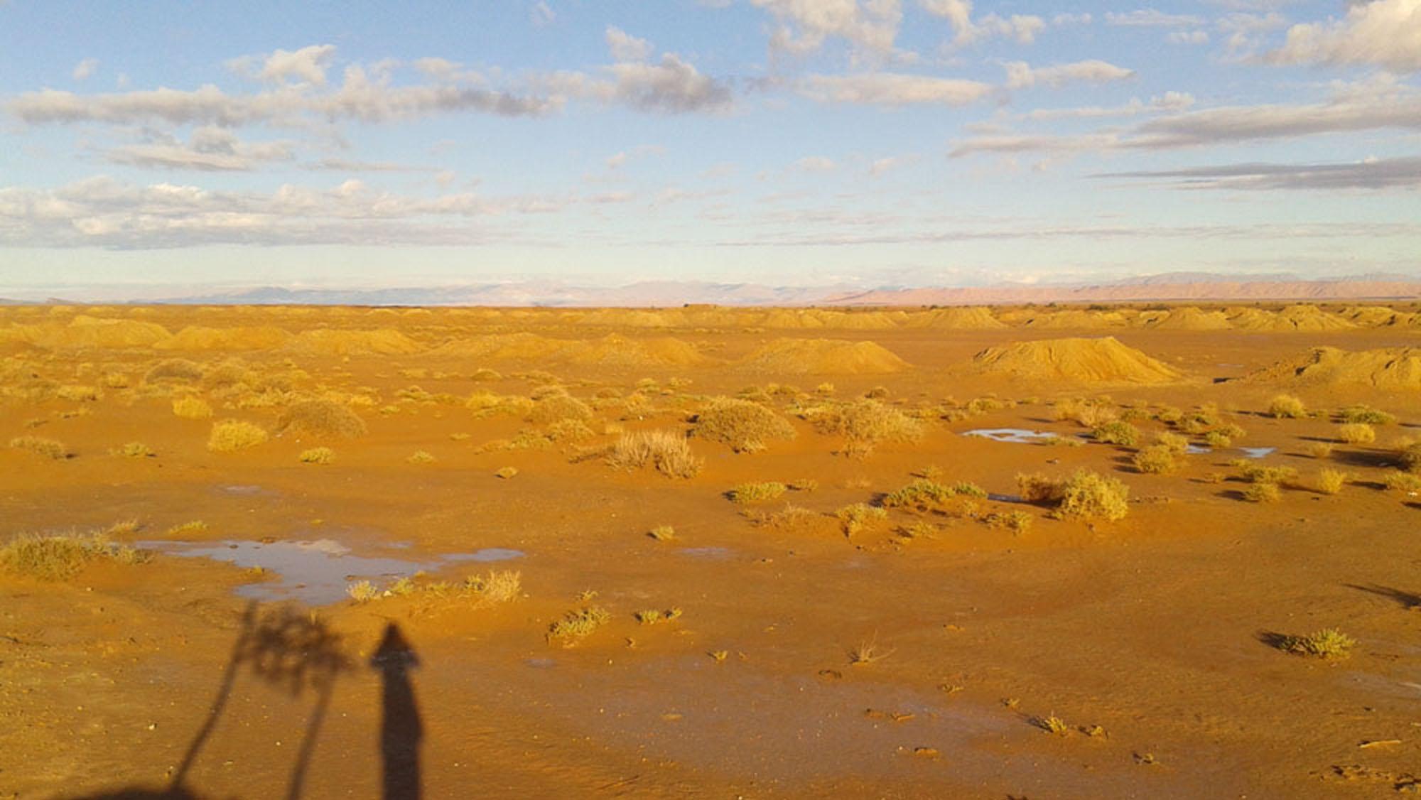 8 Tage/7 Nächte von Marrakech nach Marrakech - Tour mit Wüstenfeeling und Cameltrekking