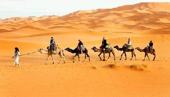 Cameltrek and sunset in the desert – 1 night in Erg Chebbi