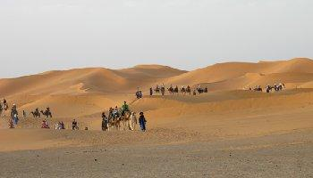 2 Nights Camel trek in Erg Chebbi